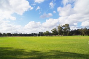 Full size AFL oval